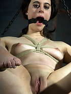314 Lusts For SD, pic 6
